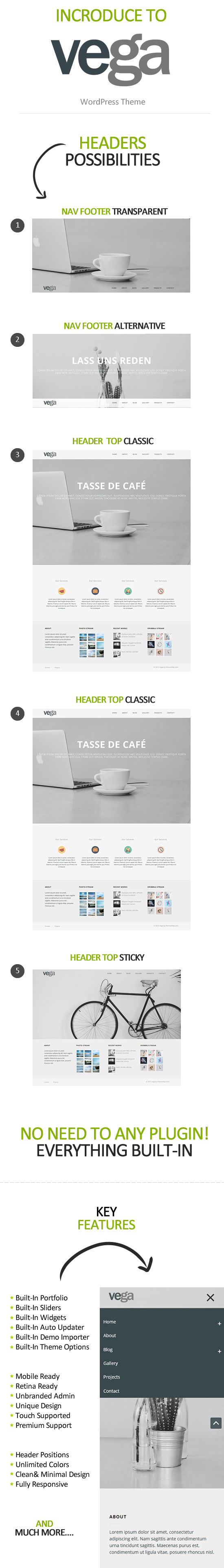 vega_wordpress_theme_info